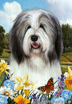 Garden Indoor/Outdoor Summer Flag - Blue & White Bearded Collie 181701