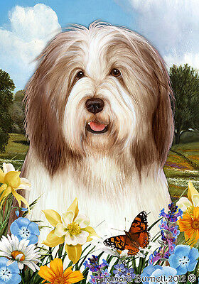 Garden Indoor/Outdoor Summer Flag - Brown & White Bearded Collie 184821