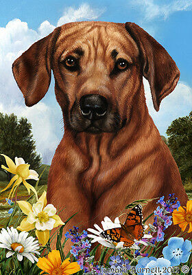 Garden Indoor/Outdoor Summer Flag - Rhodesian Ridgeback 180881