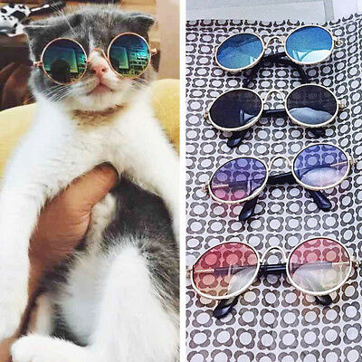 Chien Chat Chiot Animal Compagnie Goggle Lunettes Rond UV Soleil Protection Neuf