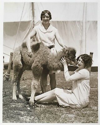 H.A. Atwell VINTAGE STAMPED Circus Performers & Baby Camel Double Weight Photo