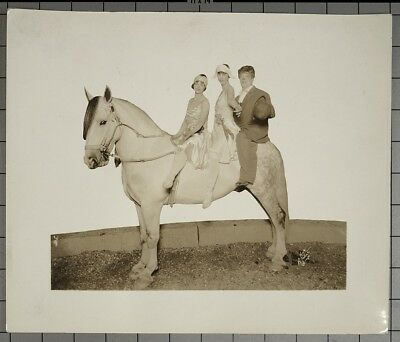 """H.A. Atwell VINTAGE STAMPED Circus Horse w/Riders & Clown Dbl Wt 10""""x12"""" Photo"""