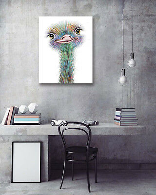 "Hand-Painted Ostrich 16x20"" Modern Wall Art Poster Prints Decor Canvas Painting"