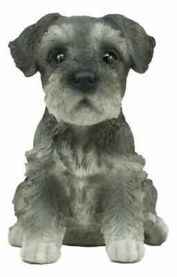 "Adorable Seated Mini Schnauzer Puppy Collectible Figurine Amazing Dog 6.5"" Tall"