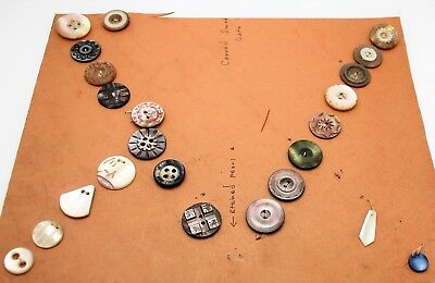 23 Beautiful 19th Century Antique Solid Mother of Pearl MOP Button Collection