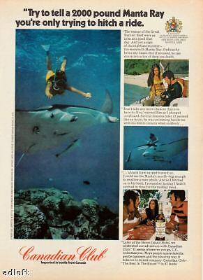 1973 Manta Ray off Great Barrier Reef Canadian Club ad