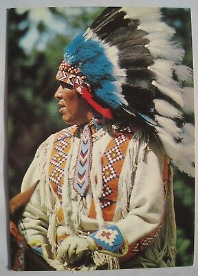 Native North American Indian in Traditional Head-dress Vintage Postcard