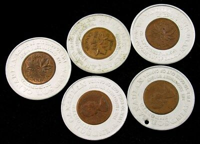5 Windsor Canadian Whiskey Encased Canada Cents - 1963(2), 1970(2), 1965