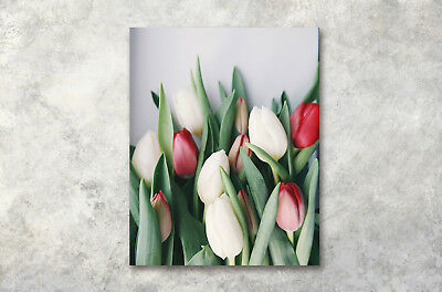 Modern Art Poster Valentine Colored Tulip Print Wall Decor Canvas Painting16x20""