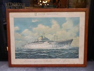 NAVE SHIP EUROPA LLOYD TRIESTINO paquebot liner vintage affiche Klodic (?)