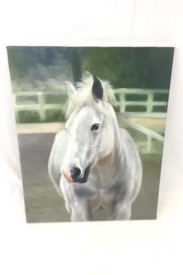 Original Painting of Stunning White Horse Eyeing You by Rose M. Sullivan