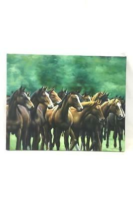 Original Oil Painting of Horse Herd Mustangs Signed by Rose M. Sullivan 2005