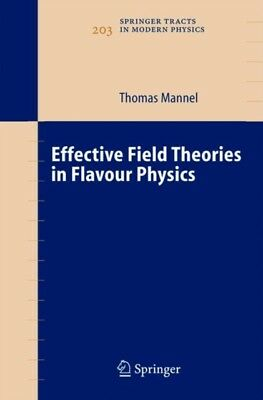 Effective Field Theories in Flavour Physics (Springer Tracts in M...