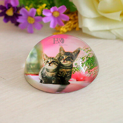 80mm Lovely Cat Crystal Paperweight Half Sphere Ball Office Table Decor Gift