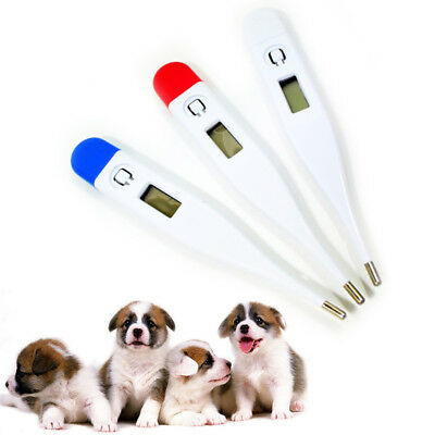 Valid Veterinary Fast Vet Thermometer Digital Thermometer Pet Dog Puppy Rabbit