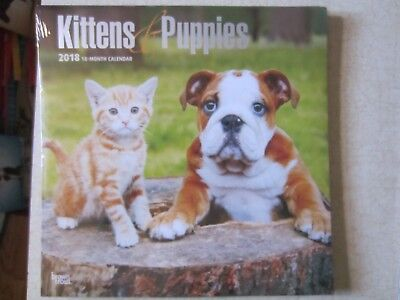 2018 Wall Calendar~18 Month~Kittens & Puppies~New In Package~Brown Trout