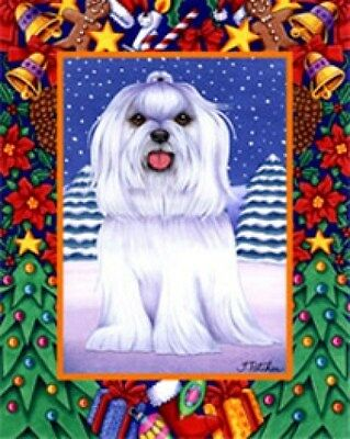 Large Indoor/Outdoor Christmas Flag - Maltese (TP) 68041
