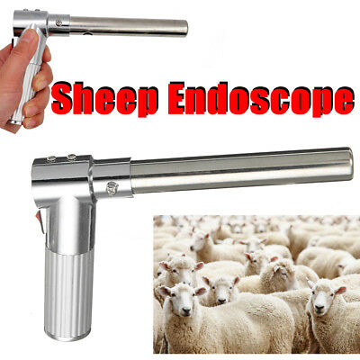 Steel & Alloy Farm Artificial Insemination Endoscop Examination for Sheep Cattle
