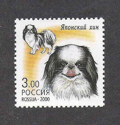 Rare Dog Art Head Full Body Postage Stamp JAPANESE CHIN SPANIEL Russia 2000 MNH