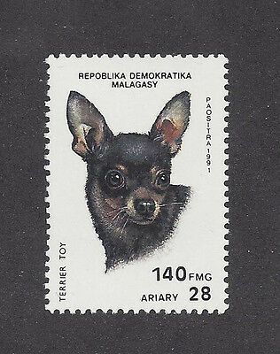 Dog Art Postage Stamp MINIATURE PINSCHER TOY MANCHESTER TERRIER Madagascar MNH