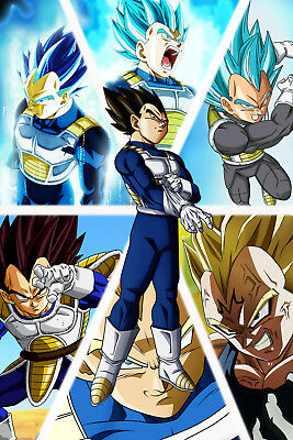 Dragon Ball Z/Super Poster Vegeta from Normal to Ultra 12in x 18in Free Shipping