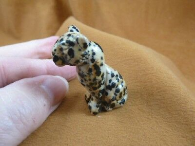 (Y-CHE-565) black spotted CHEETAH wild cat gemstone GEM carving BIG CATS statue