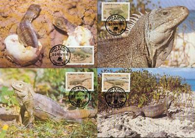 Turks and Caicos Islands 4 MC MK iguana Leguan WWF cn36