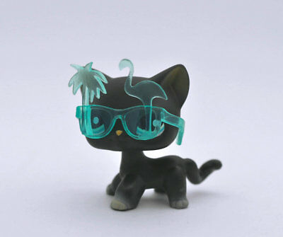 Pet Short hair Cat + Glasses Child Girl Boy Figure Littlest Loose Toy LPS973