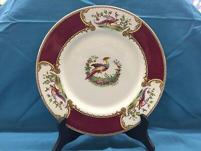 "Staffordshire Red Chelsea Bird Dinner Plates Qty. 5  (10.5"")"