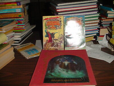 Time Life Enchanted World Wizards and Witches and Wizards Warriors and You 5, 8