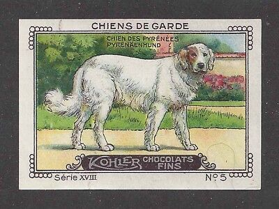 1931 France Nestle Cailler Kohler Dog Card GREAT PYRENEES PYRENEAN MOUNTAIN
