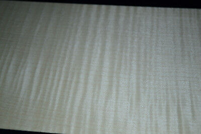 Curly Maple Raw Wood Veneer Sheets  6 x 26 inches 1/42nd                d8712-35