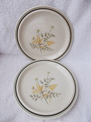 """Royal Doulton Will O'the Wisp Thick Line - 2 Dinner Plates 10.5"""""""