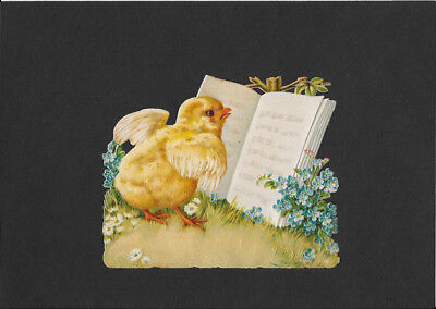 Victorian Die Cut Scrap - Easter Chick with Hymn Book