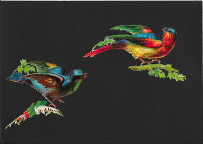Victorian Die Cut Scrap - Exotic Birds