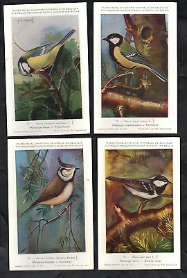 Postcards - Birds - Natural History Museum - Set of 10