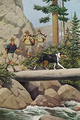 """Smooth Collie """"Scouts"""" - Vintage Color Dog Print - MATTED"""