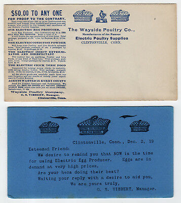 Illustrated Envelope & Advertising Ink Blotter, Wayside Poultry Co., Connecticut