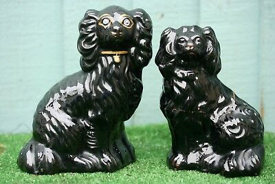 INTERESTING DUO: 19thC STAFFORDSHIRE JACKFIELD BLACK SEATED SPANIEL DOGS c1880s