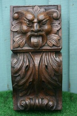 SUPERB MID 19thC GOTHIC WOODEN OAK CAPITAL CARVING WITH GROTESQUE HEAD c1860s