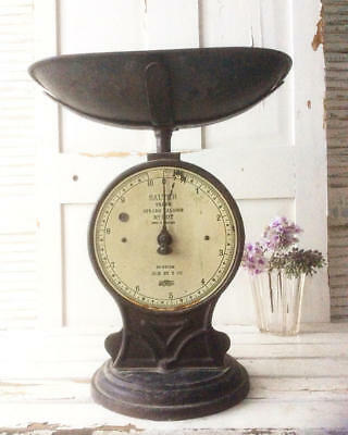 ~*Large Antique SALTER Trade/Industrial Cast Iron Weighing Scales*~