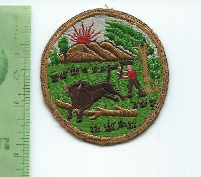 WWII Indiana  State Guard   patch  1946 - 1946  fully embroidered