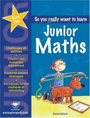 Junior Maths Book 1 (So You Really Want to Learn) by Hillard, David Paperback