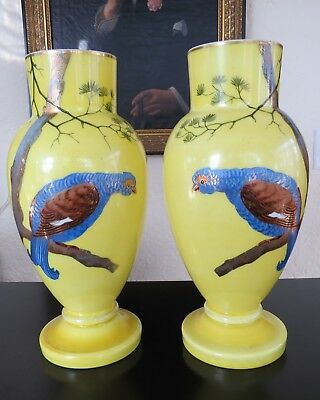 Stunning Pair Antique Victorian Bristol Glass Vases Hand Painted Birds 12.5""