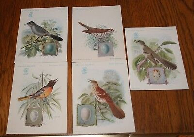 Lot of 5 Different 1920's Singer Sewing Advertising American Bird Cards