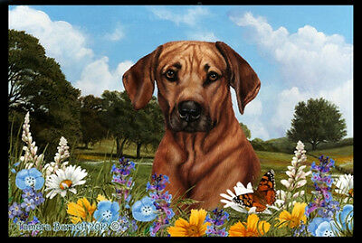 Indoor/Outdoor Summer Floor Mat - Rhodesian Ridgeback (TB) 39088