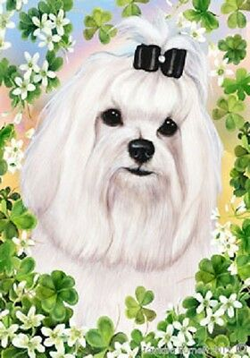 Large Indoor/Outdoor Clover Flag - Maltese Show 31221