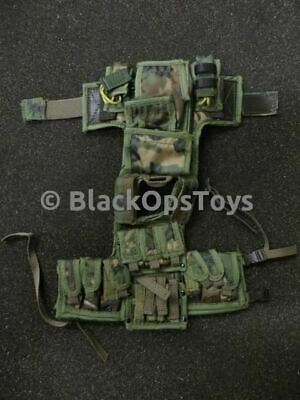 2e5ea1f6965b 1/6 scale TMT Exclusive US Navy SEAL CQB Woodland Camo Plate Carrier