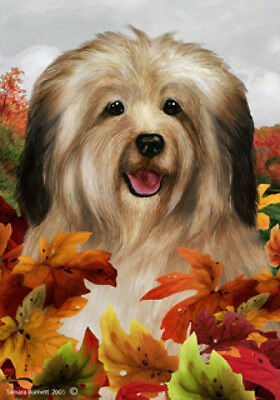 Large Indoor/Outdoor Fall Flag - Cream Havanese 13097