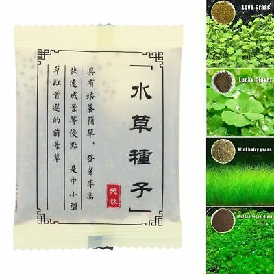 Aquarium Plant Seeds Aquatic Double Leaf Carpet Water Grass Fish Tank Decor